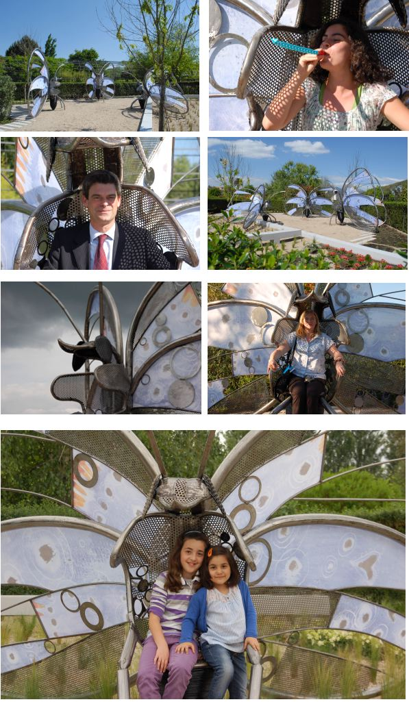 Collage Butterfly experience